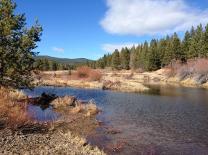 Prosser Creek, our turn-around point