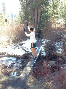Stopping on a bridge to throw ricks on the ice