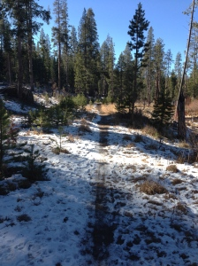 Snowy section of the trail by Alder Creek